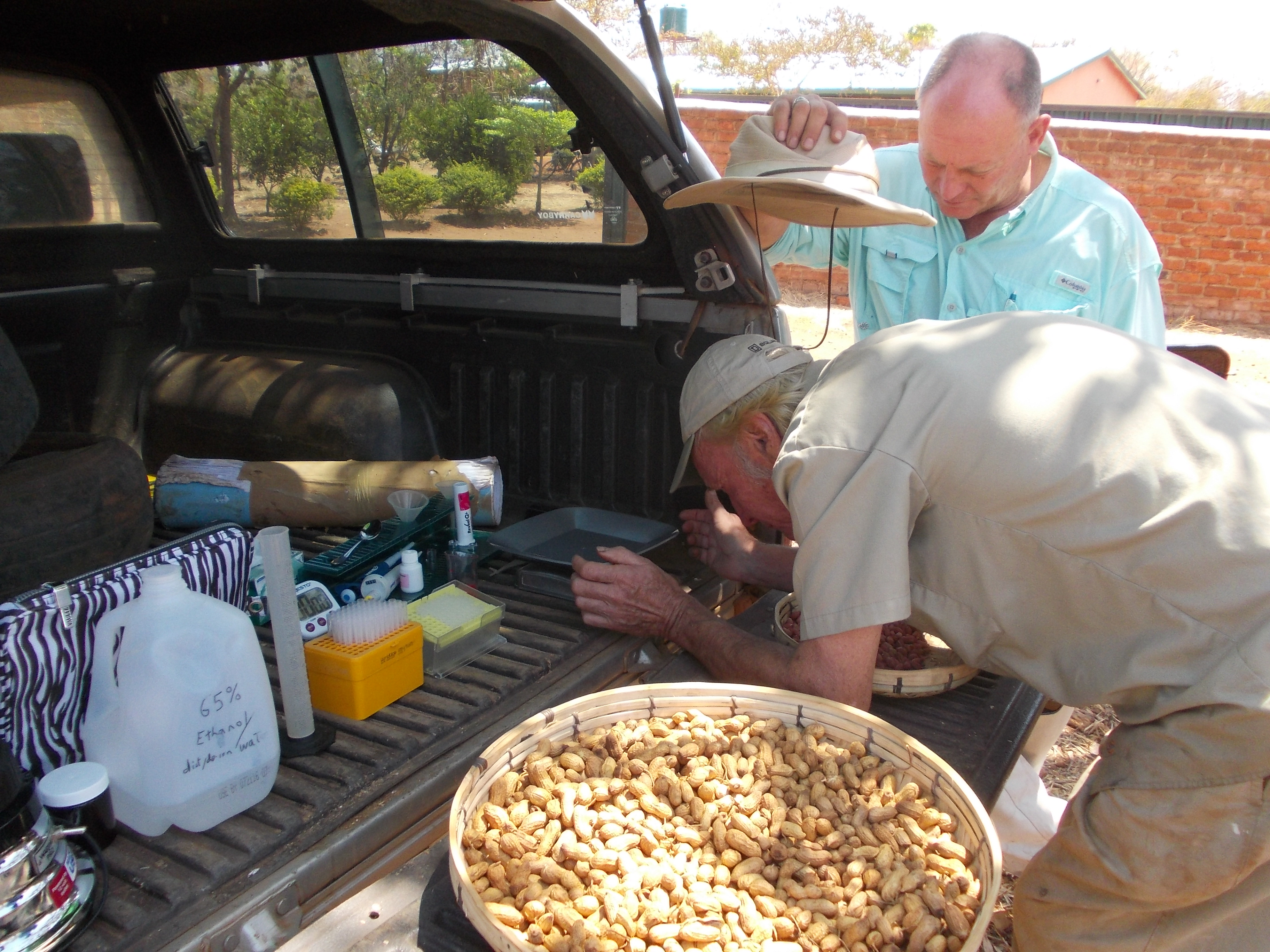Aflatoxin  testing  Tail gate  lab 0ba72