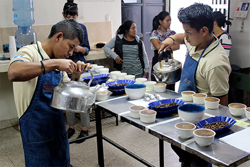 FECCEG youth coffee cupping guatemala 500