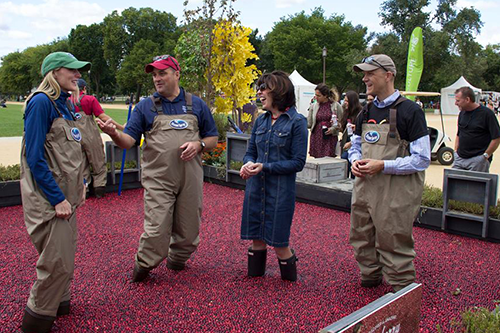 "The 2017 Co-op Festival ""told a powerful story"" of what cooperators are doing to ""build stronger communities and a better world,"" the USDA's Anne Hazlett told IMPACT Conference attends. Here, she chats with farmers in the festival's Ocean Spray cranberrybog."