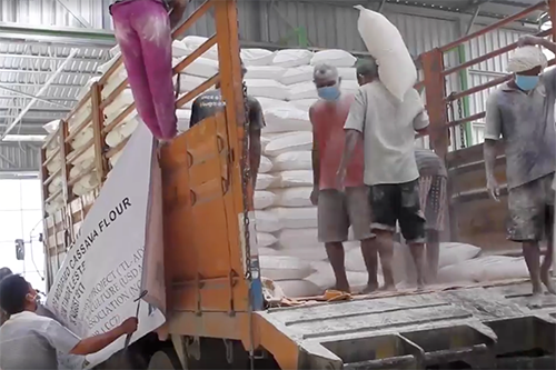Cooperativa Café Timor staff load East Timor's first cassava export, destined for Indonesia.