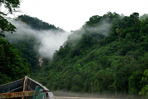The Co-op Forest in northern Peru is playing a meaningful role in slowing climate change. [photo: NCG]