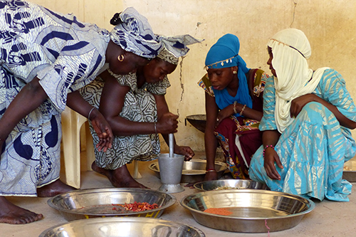 Women from Matam, Senegal learn to dehydrate fruits and vegetables.