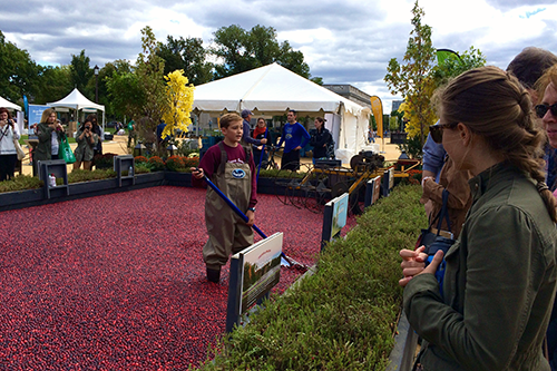 Ocean Spray will honor its farmer-owners, like this 8th-generation cranberry farmer at Co-op Festival, with new product labeling in October.
