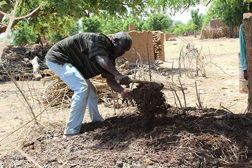 A man in Bombonyenga works his compost pile. Adopting composting and other conservation farming techniques has enabled small farmers to withstand environmental shocks.