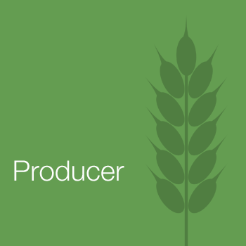 Producer Sector