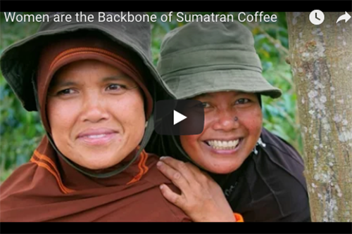 In Indonesia, women are responsible for around 75 percent of the work on coffee farms.
